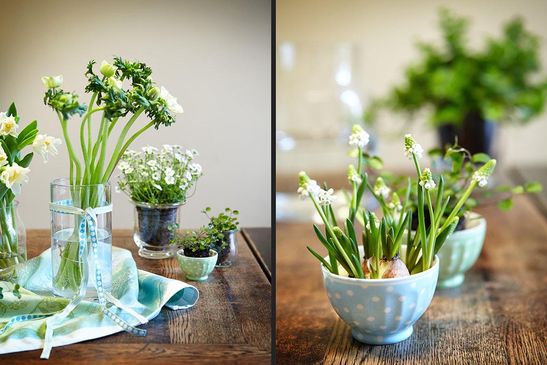 Interiorfotografie_photodesign michael loeffler_Grünpflanzen auf Tisch-min